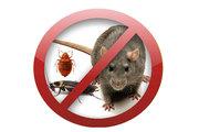 Дезинфекция,  дезинсекция,  дертизация,  уничтожение клопов,  тараканов,  насекомых